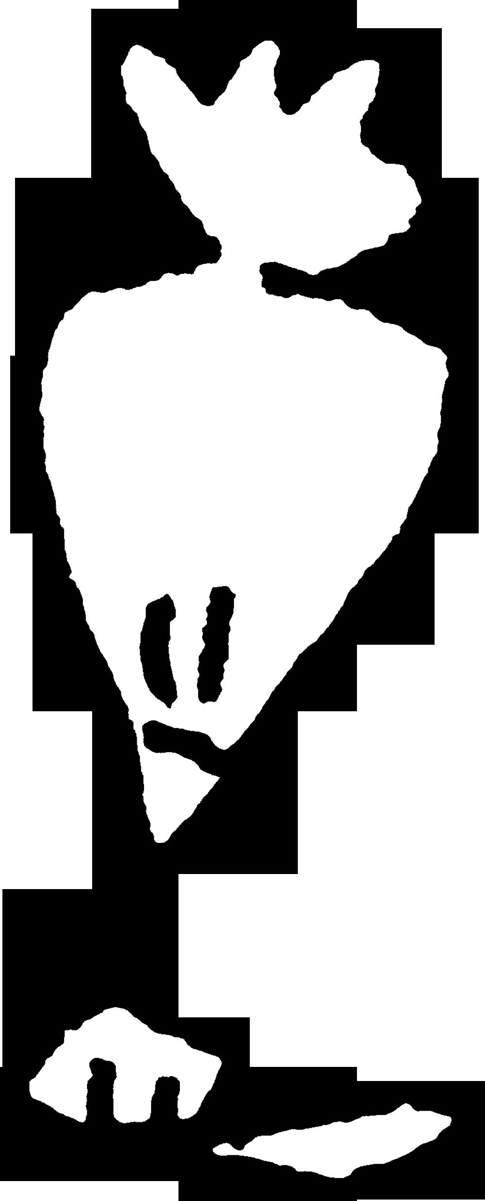 クリームしぼり袋_Forcing bag