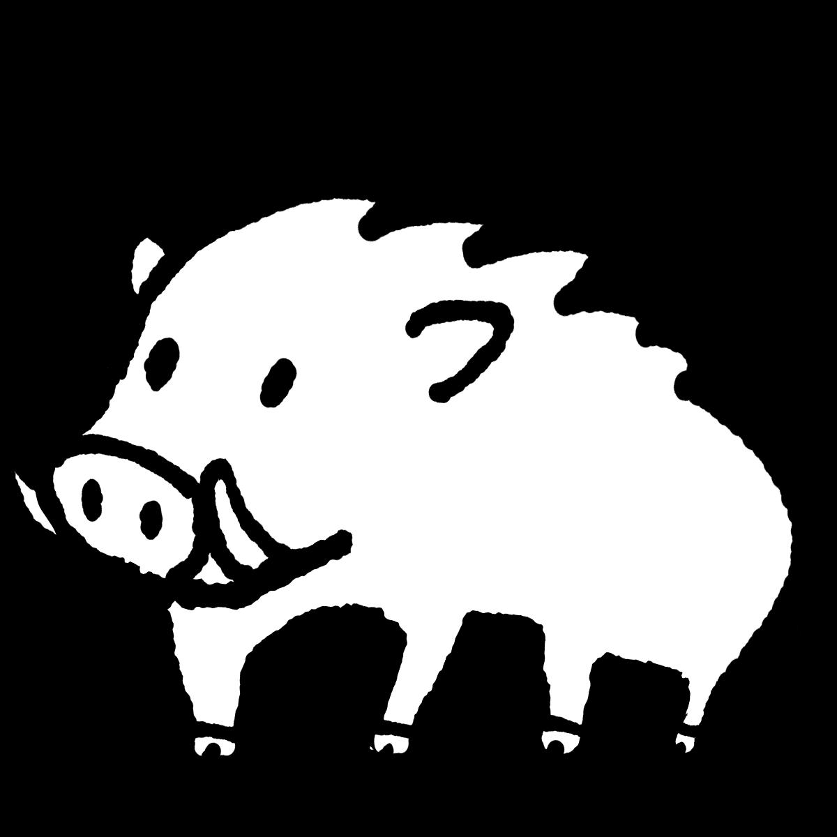 立つイノシシのイラスト / Standing wild boar Illustration