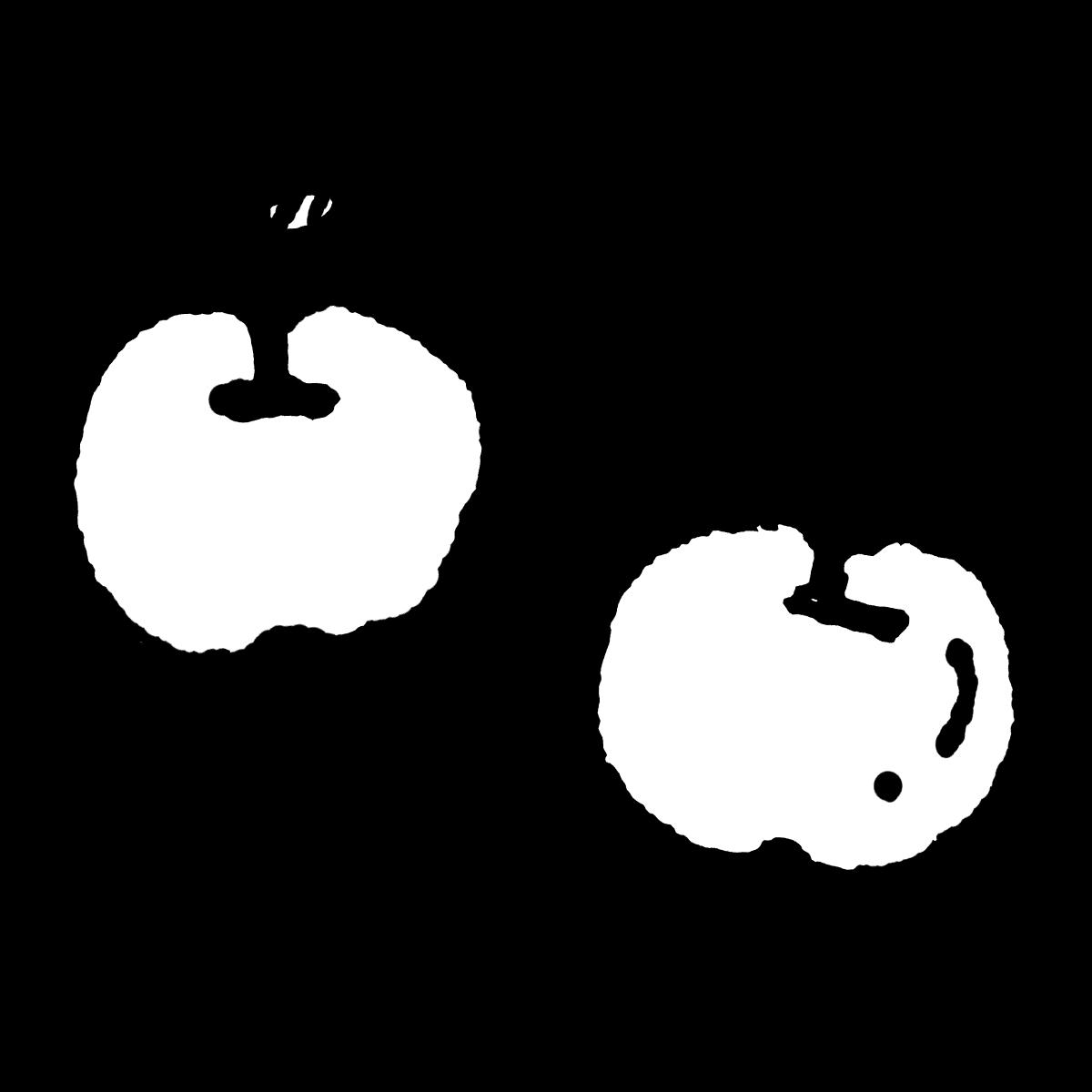 りんごのイラスト Apple  Illustration