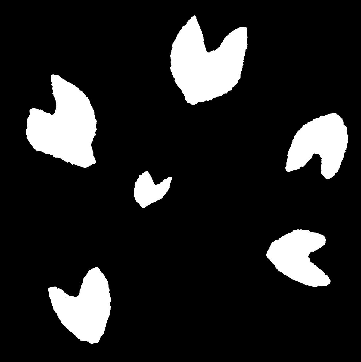 舞う桜の花びら(3種)のイラスト / Dancing Cherry Blossom Petals Illustration