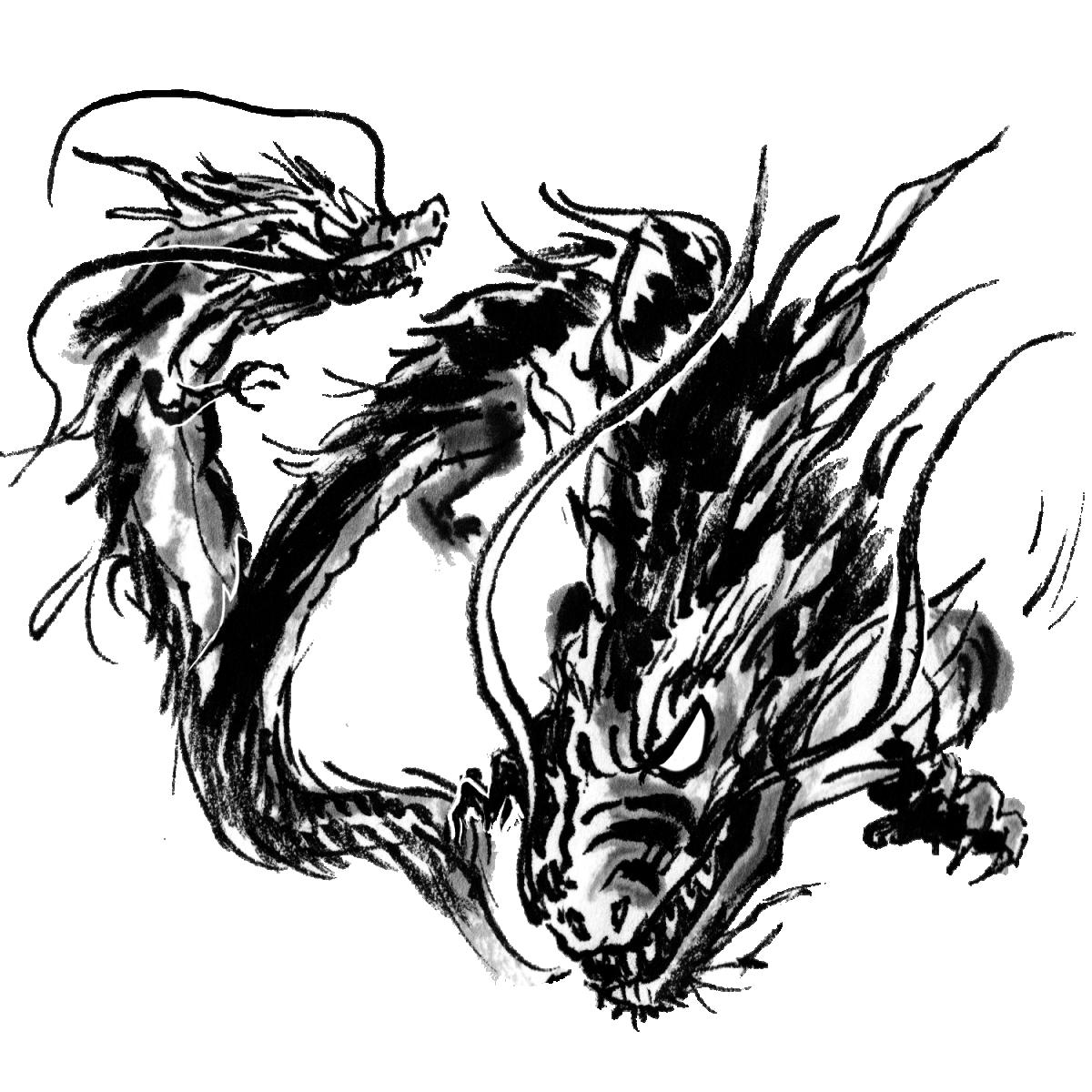二匹の龍のイラスト Two Dragons  Illustration